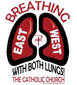 Both_Lungs_33463234_std